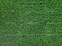 Artificial Turf FH-024 10mm per M²