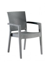 Paris Arm Chair Grey